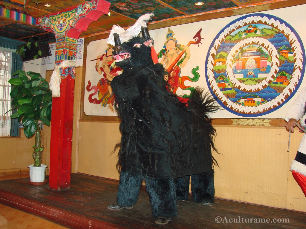the traditional Tibetan Yak Dance