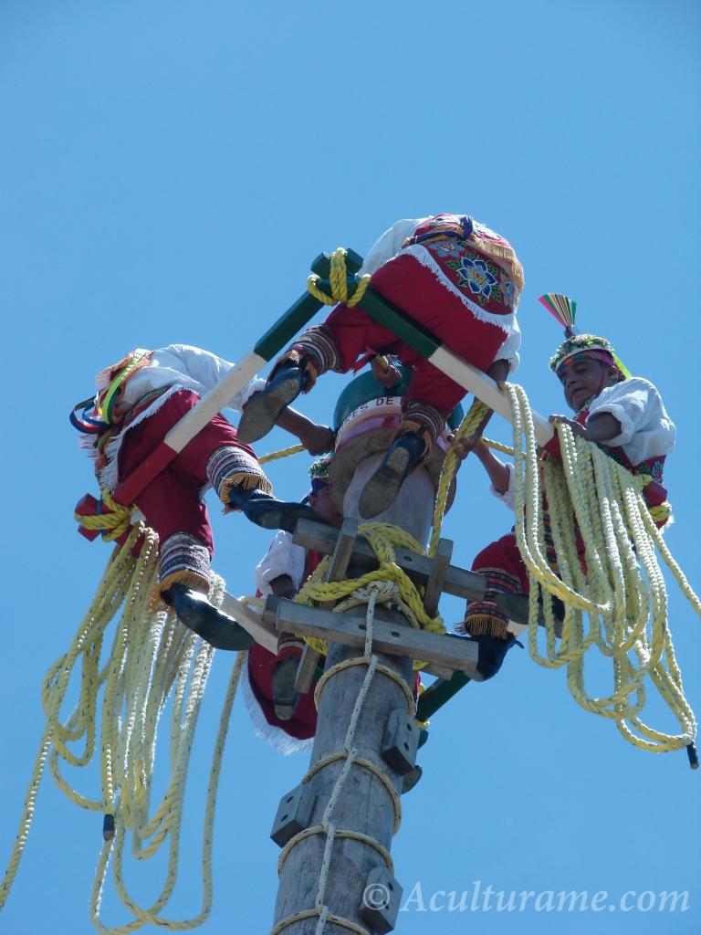 Voladores de Papantla on top of the tree pole