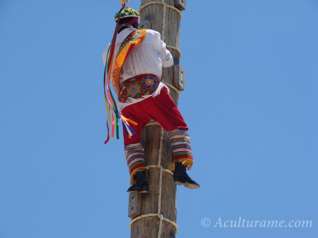 One by one the four Birdmen climb the tree pole