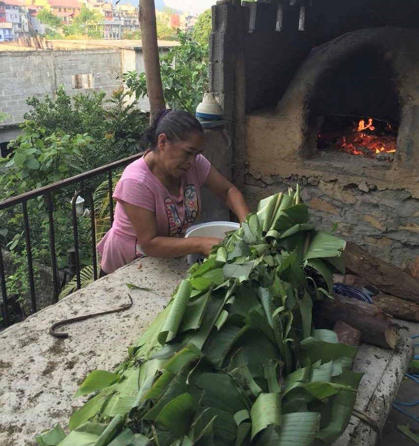 selecting the best papatla leaves prior to making zacahuil