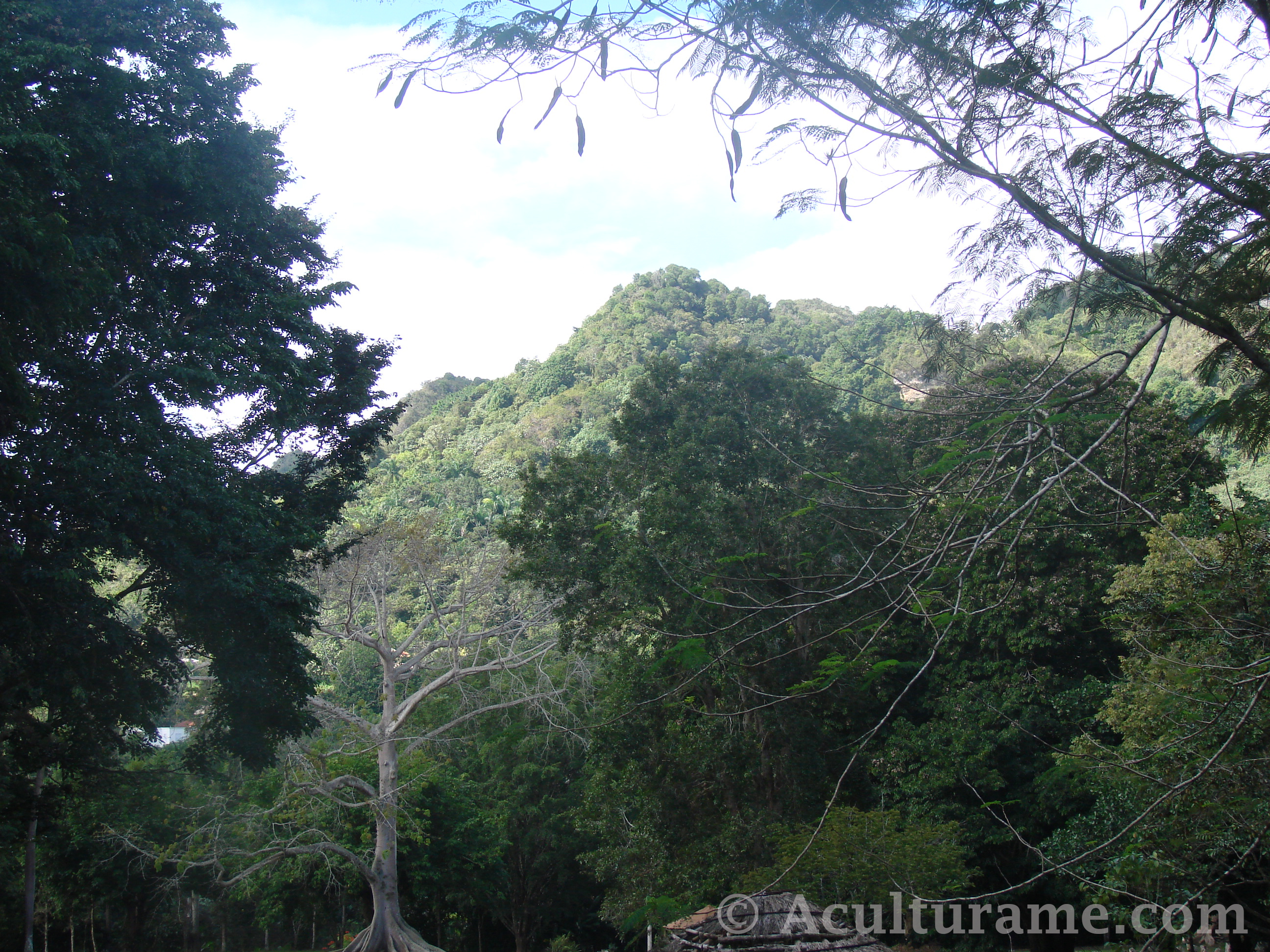 Our Visit to the Caguana Indigenous Ceremonial Park